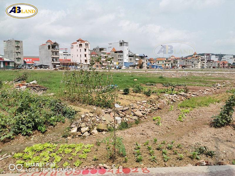 Đất Nền Khau Da Thủy Nguyên Giá Gốc Đầu Tư Năm 2020