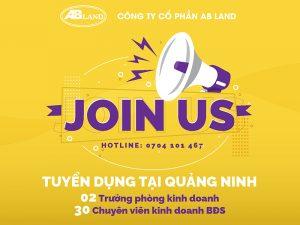 AB Land tuyển dụng trưởng phòng và chuyên viên kinh doanh bất động sản tại Quảng Ninh